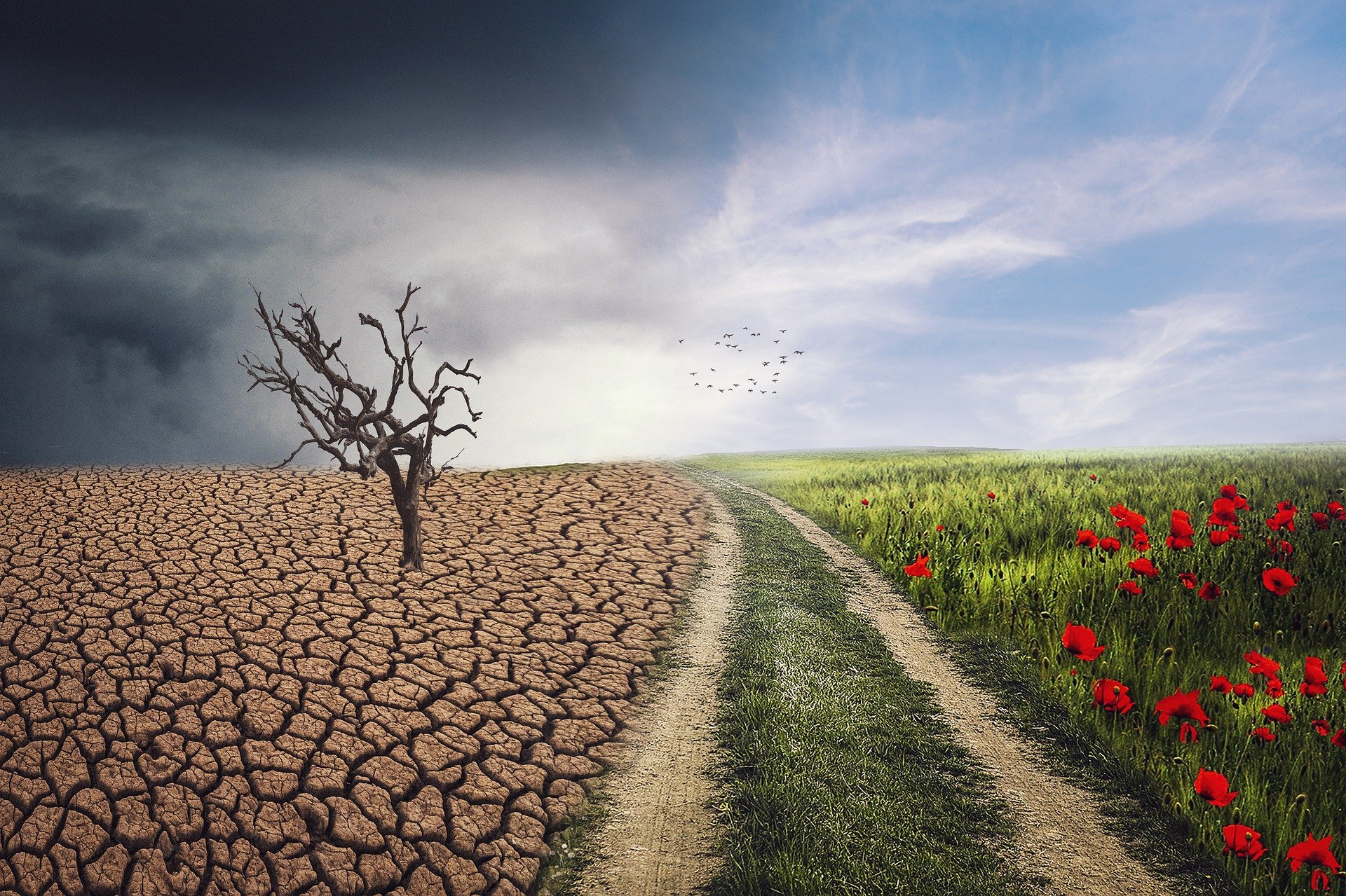 Zmiany w życiu – jak sobie z nimi radzić?